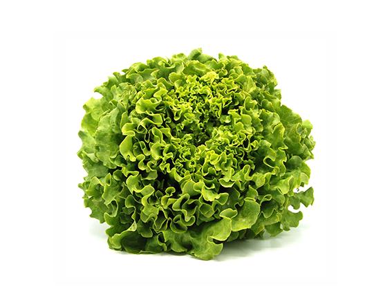 Salades de Marmande